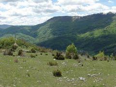 Paragliding Mojkovac , start Gradac SW by <b>Dusan Stevovic</b> ( a Panoramio image )