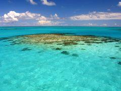 caribic anegada reef by <b>illusandpics.com</b> ( a Panoramio image )