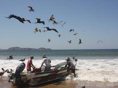 """"""" Gaviotas y Pescadores"""".... Amigos Inseparables del Mar./  """"Sea by <b>galfer</b> ( a Panoramio image )"""