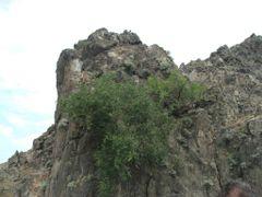 Бичурский утес (крупно) by <b>Eugene_Gromov</b> ( a Panoramio image )