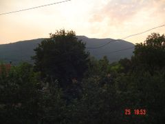 On Tovic hill you can find many Tilia trees by <b>Montenegrin77</b> ( a Panoramio image )