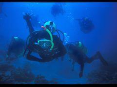underwater by <b>sopronyi</b> ( a Panoramio image )