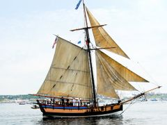 Halifax Harbour Tallship by <b>paul toman</b> ( a Panoramio image )
