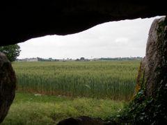 Regard cerealier... by <b>katricoin</b> ( a Panoramio image )
