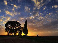 Hasharon sunset by <b>photoprospect</b> ( a Panoramio image )