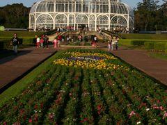 Jardim Botanico Curitiba Parana by <b>Kathia Erzinger Prox</b> ( a Panoramio image )