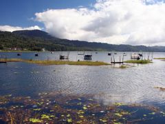 A Walk Beside Lake Buyan: Fishing the Lake by <b>Ian Stehbens</b> ( a Panoramio image )