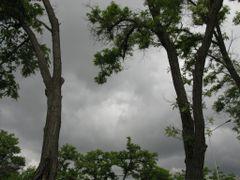 Без названия by <b>farjadpc</b> ( a Panoramio image )