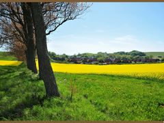 Vieuw on Kaseberga by <b>F. van Daalen</b> ( a Panoramio image )
