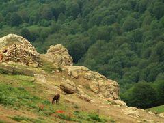 masoole by <b>ali.mohamadi</b> ( a Panoramio image )