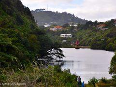 Zealandia by <b>Eva Kaprinay</b> ( a Panoramio image )