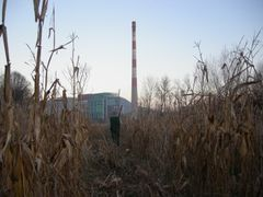 """""""The Catcher in the Rye"""" by <b>TheMiner</b> ( a Panoramio image )"""
