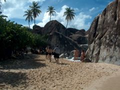 Playa en Virgin Gorda 5 by <b>VIAJERO22</b> ( a Panoramio image )