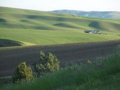 Hills South of Moscow by <b>SteenJensen</b> ( a Panoramio image )