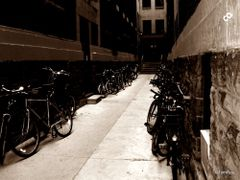 Bicycle Alley - on Roncesvalles, Parkdale by <b>Tomros</b> ( a Panoramio image )