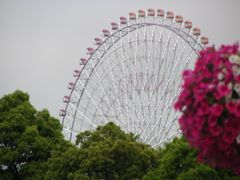 Yokohama City by <b>sabynag</b> ( a Panoramio image )