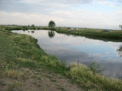 с.Степное, пруд. Место для рыбалки by <b>m.varhan</b> ( a Panoramio image )