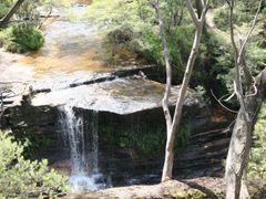 Along the Darwin Walk above Wentworth Falls, Blue Mtns National  by <b>Ian Stehbens</b> ( a Panoramio image )