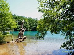 Plitvitsky lakes. Плитвицкие озера. by <b>Buts_YV</b> ( a Panoramio image )