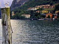 Menaggio, Italy  by <b>Oram</b> ( a Panoramio image )