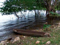 "Lamanai  - ""the Submerged crocodile"" - New River Lagoon - © rk by <b>rokaPic40666</b> ( a Panoramio image )"