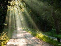 Sunrays by <b>© BraCom (Bram)</b> ( a Panoramio image )