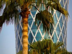 Palm trees, Tornado Tower by <b>S?ren Terp</b> ( a Panoramio image )
