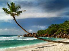 Seychelles Dream_20 by <b>t.hoffi</b> ( a Panoramio image )