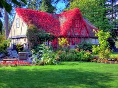 Ivy covered cottage in View Royal by <b>Wiley1</b> ( a Panoramio image )