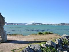 Sculpture and Lyall Bay by <b>Eva Kaprinay</b> ( a Panoramio image )