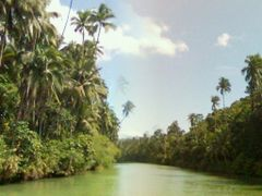 Loboc River journey by <b>BigAndSmall</b> ( a Panoramio image )
