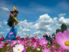Scarecrow and the Cosmos by <b>ssSUH</b> ( a Panoramio image )