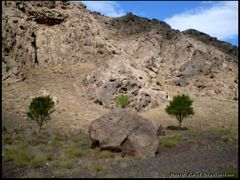 Symmetry in Nature by <b>?Berat Qevi Endam</b> ( a Panoramio image )