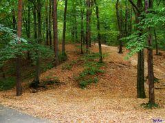 Parcul Trivale - Pitesti (septembrie 2010) by <b>IceBox</b> ( a Panoramio image )