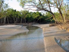 ::WORLD HERITAGE SITE::The Sundarbans in southern Bangladesh is  by <b>Shaikh Aslam Goni</b> ( a Panoramio image )