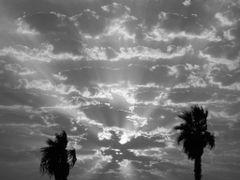 Sunlight by <b>Milla Marder</b> ( a Panoramio image )