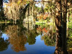 Clear sky in the Swamp by <b>Nakhatarn</b> ( a Panoramio image )