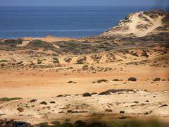 Coast of Wingate by <b>CarmelH</b> ( a Panoramio image )
