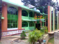 Mahkamiyyah Arabic College by <b>sawfar</b> ( a Panoramio image )
