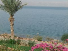Dead Sea, Jordan by <b>JJo. Bellamy</b> ( a Panoramio image )
