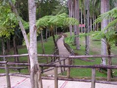 "Caguana5 by <b>Gabriel D""Attili</b> ( a Panoramio image )"