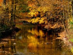 Pure Gold by <b>HAMANA</b> ( a Panoramio image )