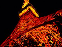 Tokyo Tower (October 2010) by <b>taoy (2sq)</b> ( a Panoramio image )