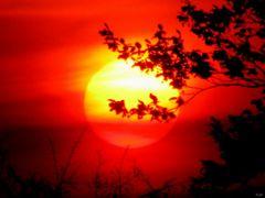 *Morning Sun* by <b>ka9894</b> ( a Panoramio image )