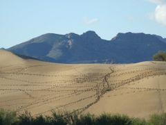 Desert and Mountains of Mongolia by <b>Chouden Boy</b> ( a Panoramio image )