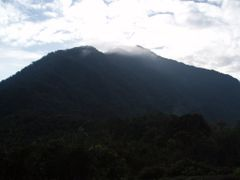 View to Gunung Mulu Summit by <b>Guy H</b> ( a Panoramio image )