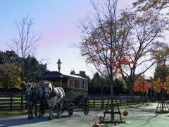 Omnibus shuttle, Greenfield Village - Dearborn, MI, US by <b>Irene Kravchuk</b> ( a Panoramio image )