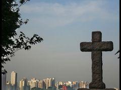 Cemiterio do ARACA - Sao Paulo - BRASIL. by <b>AntonioVidalphotography</b> ( a Panoramio image )