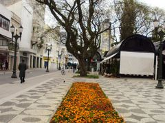 Praca Generoso Marques, Curitiba, Parana by <b>Kathia Erzinger Prox</b> ( a Panoramio image )