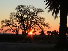 Montevideo - Uruguai. by <b>Carlos Meller</b> ( a Panoramio image )